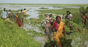 Bangladesh povertà